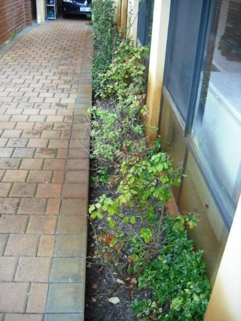 Canning Vale Building Inspection - Flower Beds